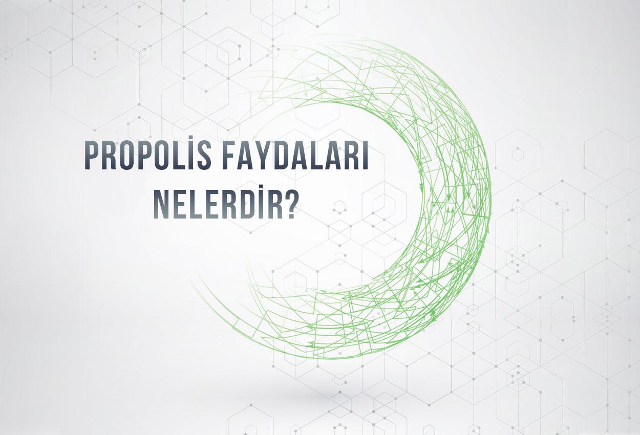 Propolis Faydalari Nelerdir